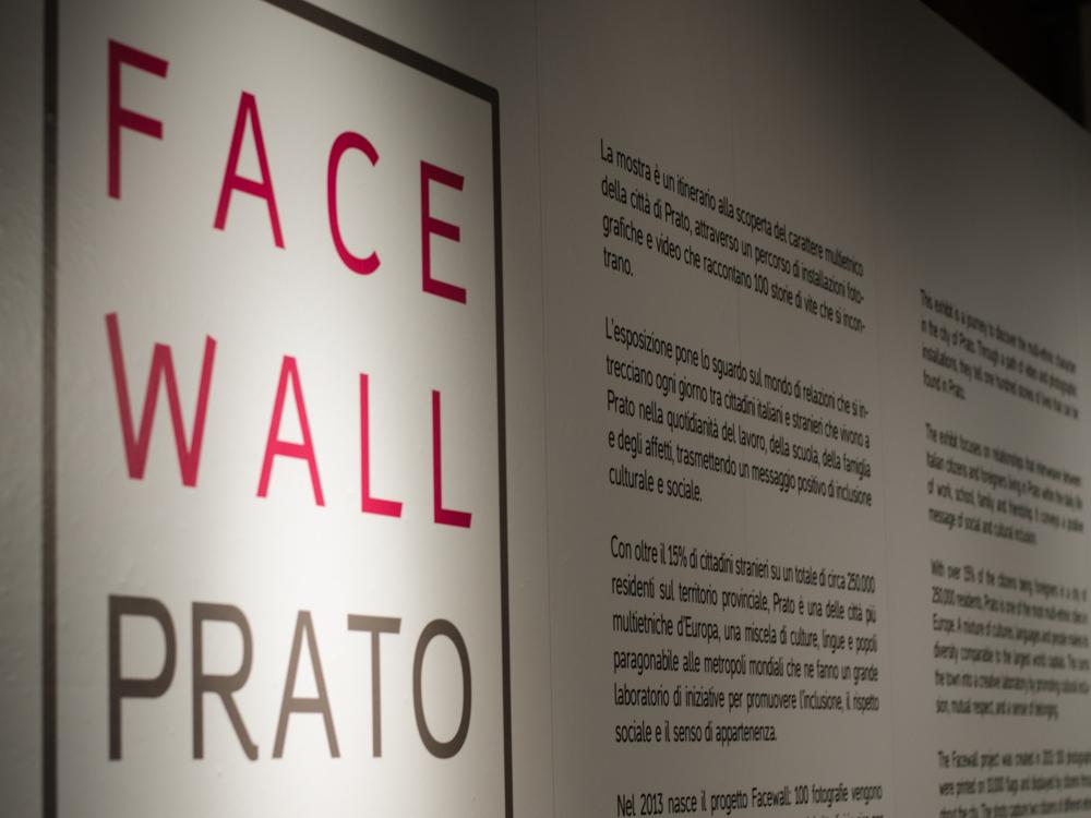 facewall-8517