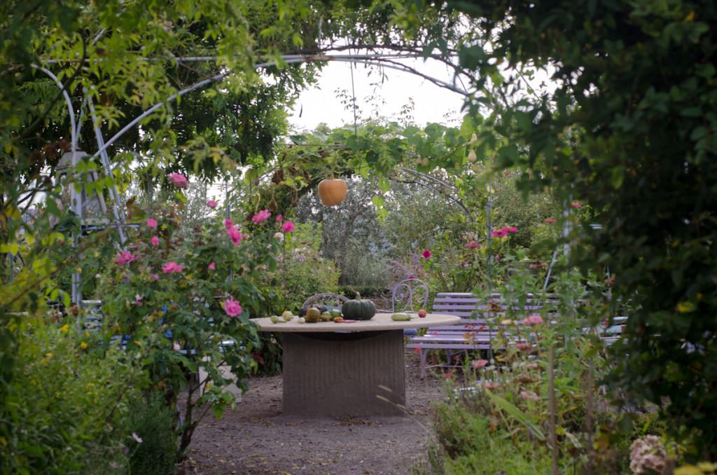 giardino-8374